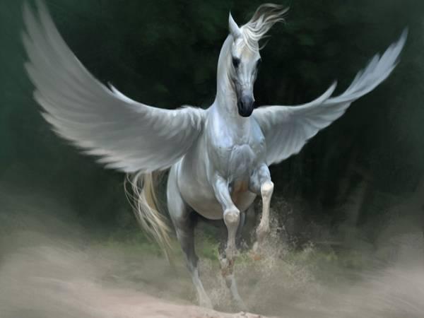 Nằm mơ thấy ngựa có điềm báo tốt xấu thế nào