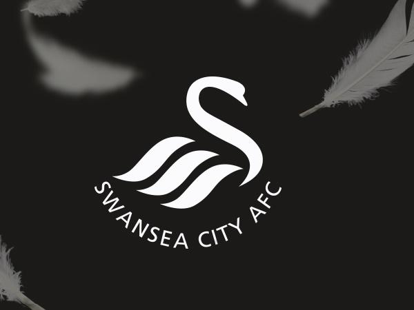 Câu lạc bộ bóng đá Swansea City - Lịch sử, thành tích của CLB